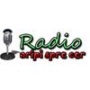 Radio Aripi Spre Cer