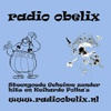 Radio Obelix Piratenhits & Polka's