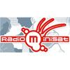Radio Minisat Targoviste