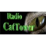 Radio CatTower