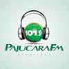Rádio Pajuçara FM