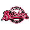 Birmingham Barons Baseball Network