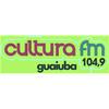 Rádio FM Cultura