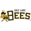 Salt Lake Bees Baseball Network