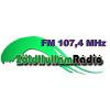 Zold Hullam Radio