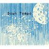 Radio Ionosphere - Down Tempo