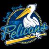 Myrtle Beach Pelicans Baseball Network