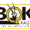 Bok Radio (higher quality) - radiostream.co.za powered by XP Broadcasting