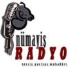 Numayis Radyo