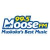 99 5 Moose FM