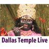 Dallas Temple Live