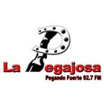 La Pegajosa