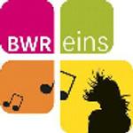 BWReins