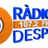 Radio Despi