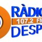 Radio Despi