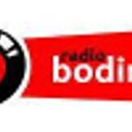 Radio Bodink