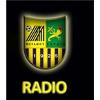 Metalist Radio