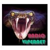 Radio Vipernet Pascani Blues
