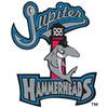 Jupiter Hammerheads Baseball Network