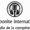 ARTIBONITE INTERNATIONAL