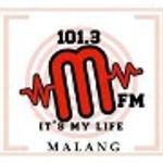 """MFM """"It's My Life"""""""