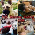 Retro Music Radio Network