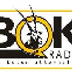 Bok Radio (medium quality) - radiostream.co.za powered by XP Broadcasting