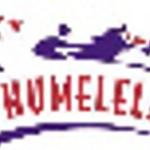 Teletrack Phumelela