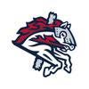 Binghamton Rumble Ponies Baseball Network