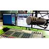 Radio Shabab