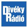 Diveky Radio Made In Hungary
