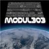 modul 303