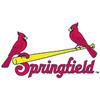 Springfield Cardinals Baseball Network