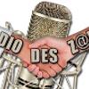 Radio Des Zamis