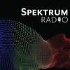 Spektrum Dublin