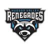 Hudson Valley Renegades Baseball Network
