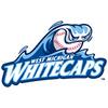 West Michigan Whitecaps Baseball Network