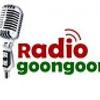 Radiogoongoon